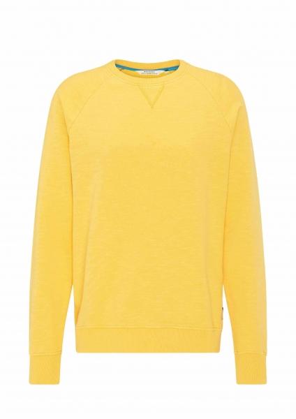 Männer Sweatshirt Raglan sunshine